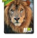 Povlečení Animal Planet